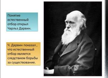 Чарльз Дарвин Фото  — 100 фотографий: смотреть онлайн